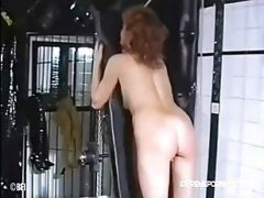 Flogged And Caned In Bdsm Basement